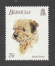 Dog Art Head Portrait Postage Stamp Champion BORDER TERRIER Bermuda 1992 MNH