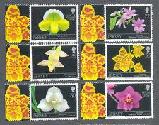 Jersey Orchids-Plants- Flowers set mnh