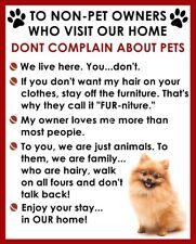 Pomeranian Non Pet Owner Magnet #2