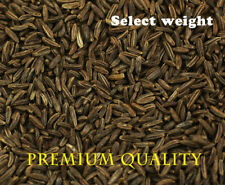Caraway Seeds Whole, Dried  *** Premium Quality *** FREE UK POSTAGE