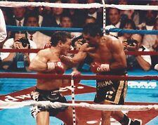 VINNY PAZIENZA vs ROBERTO DURAN 8X10 PHOTO BOXING PICTURE