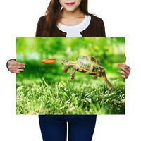 A2 | Tortoise Turtle Jumping Close Up Size A2 Poster Print Photo Art Gift #14390