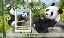 Togo 2017 MNH Giant Pandas 1v S/S Panda Wild Animals Stamps