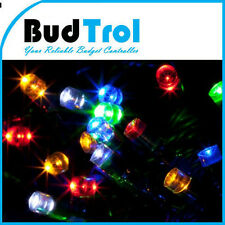 70M 600 LED Multi Bulb Green String Rope Fairy Lights With Memory Controller