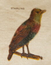 Vintage tobacco cigarette silk - use in crazy quilt - Bird Starling
