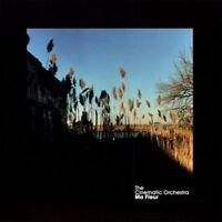 The Cinematic Orchestra - Ma Fleur [CD]
