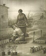 K0484 Ortolani praticano la semina nelle blocchiere di terracotta_Stampa antica