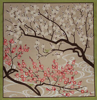 Furoshiki Wrapping Cloth Japanese Fabric 'Plum Blossoms and Birdies' Cotton 50cm