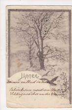 Bauer Jaenner 1900 U/B Art Postcard 739a