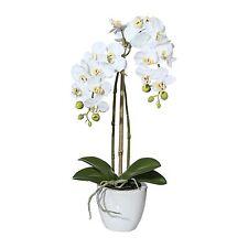 künstliche Orchidee Phalaenopsis 45cm 2 Rispen Keramik Topf Weiß Realtouch Blume