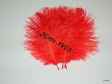 "10 RED OSTRICH FEATHERS 14-16""L"