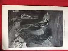 m2o ephemera 1905 book plate she haggard in a second the attempt had been made