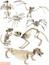 Halloween Animal Skeleton Prop Party Decoration Rat Spider Cat Dog Bird Bat