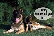 "Humorus german shepherd dog  frigerator magnet 2 1/2 X 3 1/2 """