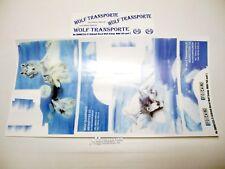 """Tamiya Set adesivi """" WOLF TRASPORTI """" 500907224 PER MAN TGX 56325 und 56329"""