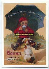 ad1539 - Bovril . boy and dog - modern advert postcard