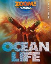 Ocean Childrens Fiction Books