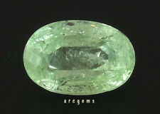 Green Tourmaline Oval 7.33ct 14.5x10mm Loose Natural Gemstone Afghanistan