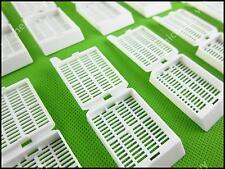 50pcs White Tissue Embedding Processing Cassettes