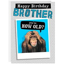 BROTHER BIRTHDAY CARD - Funny Humour Joke Monkey Good Grief Old REAL PHOTO