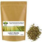 Lady's Mantle Alchemilla Vulgaris Wild Harvested Organic