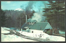 Vermont Maple Sugar Sugaring Building Deep In The Mountain Woods Chrome Postcard