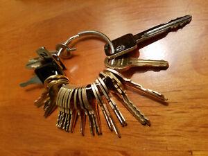 21pc Pentesting Key Set 1284x FEO K1 16120 222343 CH751 501CH 2642 A126 C415A