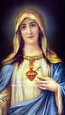 Hail Mary Prayer Card and Devotional Prayer (wallet size)