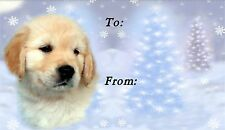 Golden Retriever Christmas Labels by Starprint - No 3 - Auto combined postage