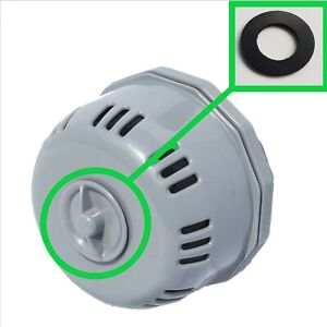 Bestway Lay Z Spa New York Replacement Filter housing screw Seal.