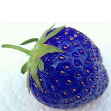 100pcs blue strawberry seeds vegetable home garden vitamin fruit tree plants3CAU