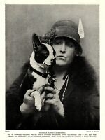 1930s Antique BOSTON TERRIER Print Champion Kandy Kid of Canuck 3561-L