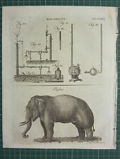 1797 ORIGINAL ANTIQUE PRINT ~ ELECTRICITY EQUIPMENT EXPERIMENT ELEPHANT ELEPHAS