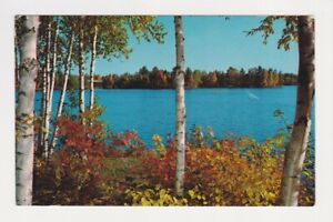 One of the many pine - fringed lakes, Theo Hamm Brewing Co Hamms Beer Postcard