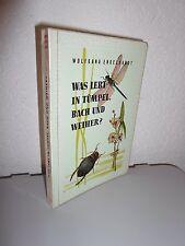 Was lebt in Tümpel, Bach und Weiher? von Wolfgang Engelhardt (1959)