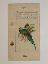 Exquisite Indo Persian Miniature Botanical Ornithological Gouache Painting