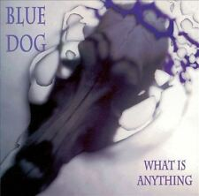 BLUE DOG / What is anything (Knitting Factory)