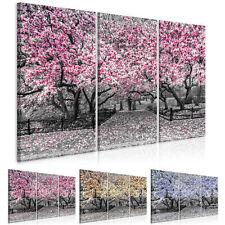 Magnolie natura immagini muro immagini XXL tessuto non tessuto tela tela c-c-024...