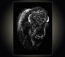 "Lithograph print ""Rufus"" A pen & ink on scratchboard drawing of a buffalo Bison"