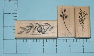 (3) Wood Mounted Rubber Stamps ~ Vines & Leaves ~ Stampin' Up!, D.O.T.S.