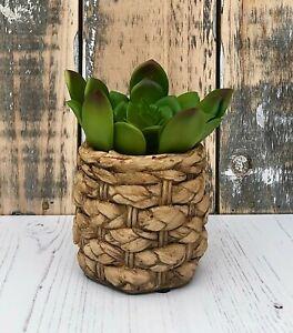 Rustic Braided Style Flower Plant Pot Decorative Succulent Herb Cactus Planter