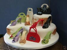 Fabulous High Heel Shoe Kit for Cake Decorating by Stephen Benison