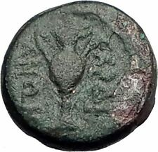 Sardes in Lydia 133Bc Rare Ancient Greek Coin Hercules Wine Cup Kantharos i62307