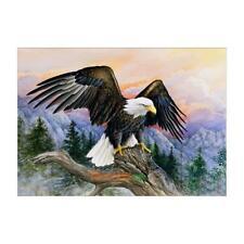 5D DIY Eagle Bird Diamond Painting Embroidery Cross Stitch Kit Mural Decor Craft