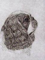 GEOFFREY LASKO - ENGLISH TOY SPANIEL DOG  LISTED ARTIST ETCHING -S&N - FREE SHIP