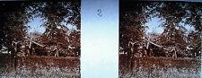 Photographie c1920 Chemin de croix des Espélugues Jésus est chargé de la croix