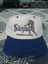 Vintage San Bernardino Stampede White/Blue Snapback