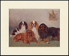 CAVALIER KING CHARLES ENGLISH TOY SPANIEL DOG GROUP LOVELY PRINT READY TO FRAME
