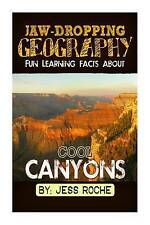 Jaw-Dropping Geography: Fun Learning Facts About Cool Canyons: Illustrated Fun L