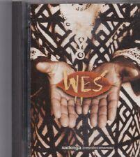 WES-Welenga Minidisc Album